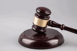Functioning Of the Tribunals - Indian Polity Notes | EduRev