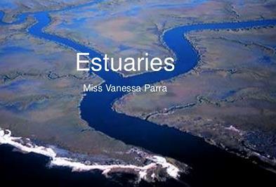 Ecology - Geography Notes   EduRev