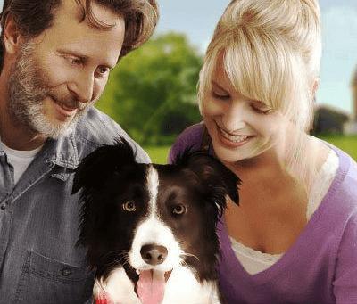 Summary - A Dog Named Duke Class 9 Notes | EduRev