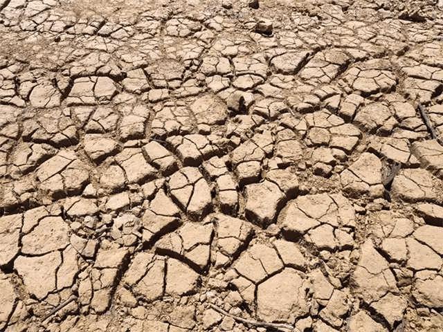 NCERT Solution - Water Class 6 Notes | EduRev