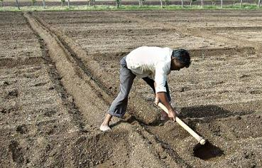 Agriculture (Part - 1) - Geography Notes | EduRev
