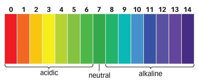 Short & Long Answer Question - Acids, Bases and Salts Class 10 Notes | EduRev