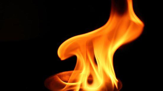 Types of Combustion Class 8 Notes | EduRev