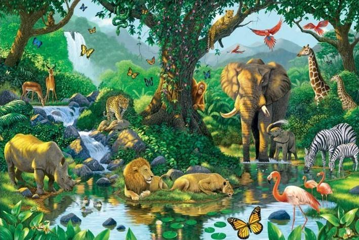NCERT Solutions - Conservation of Plants & Animals Class 8 Notes | EduRev