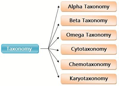 Notes   EduRev