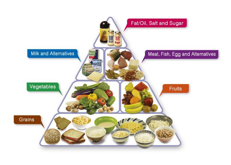 Key Concepts - Components of Food Class 6 Notes | EduRev