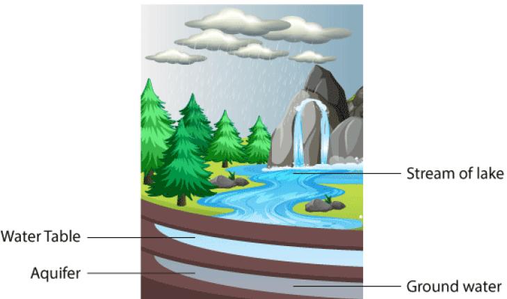 NCERT Solution - Water - A Precious Resource Class 7 Notes | EduRev
