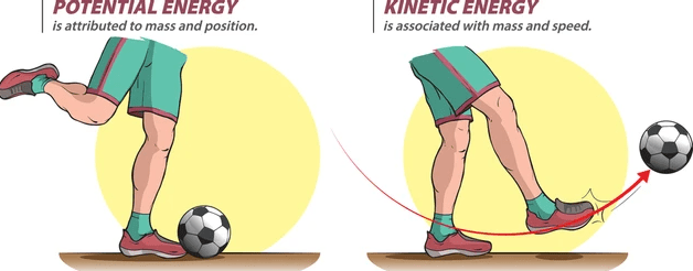 Doc: Kinetic Energy and Potential Energy Class 11 Notes | EduRev