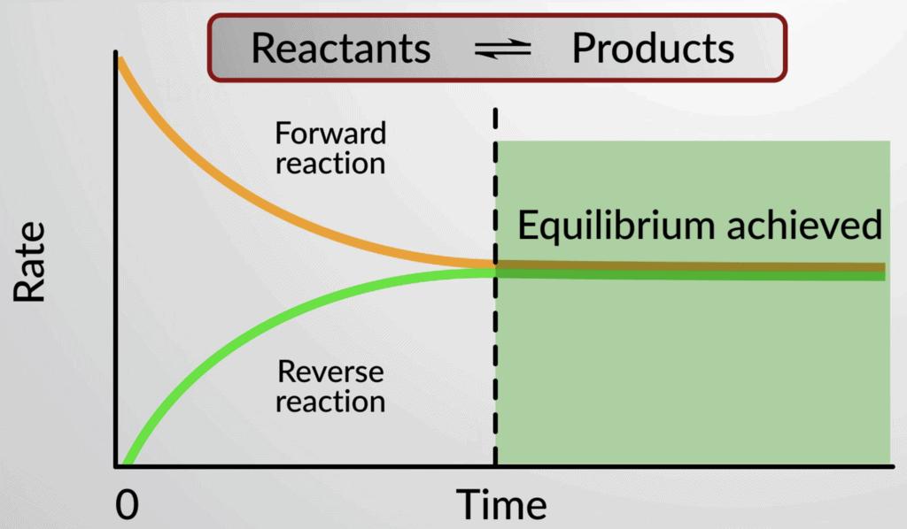 Types of Equilibrium Class 11 Notes | EduRev