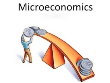 Basics of Microeconomics, Part - 1 UPSC Notes | EduRev