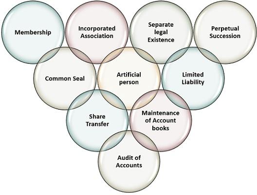 Introduction to Company Law B Com Notes   EduRev