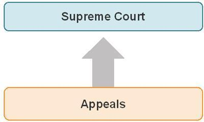 NCERT Summary: Judiciary - 1 Notes | EduRev