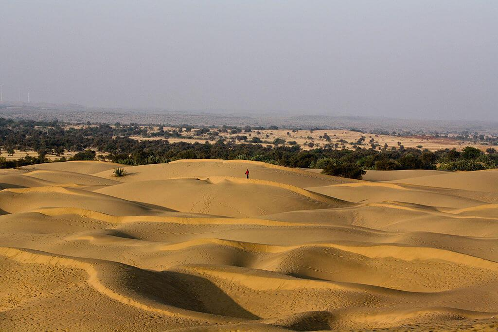 The Savanna and Hot Desert Region UPSC Notes | EduRev