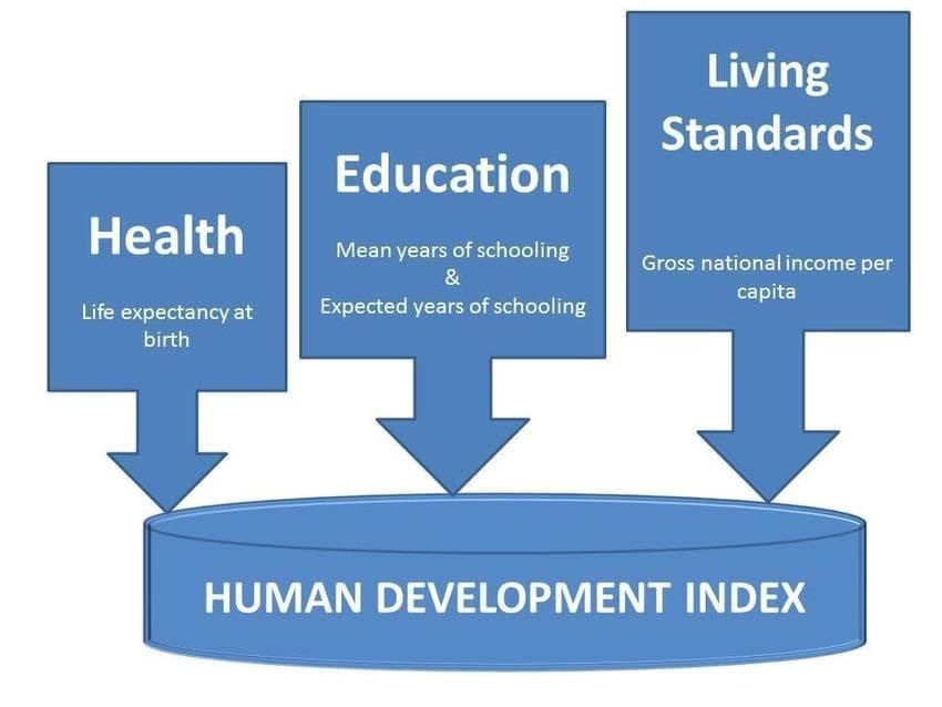 Ramesh Singh Summary: Growth, Development & Happiness UPSC Notes | EduRev