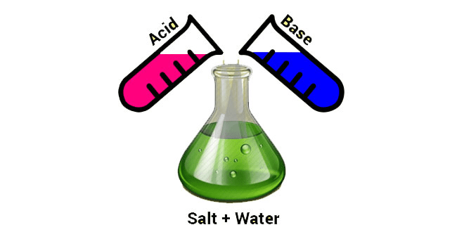 Chapter Notes 2 - Chapter 5: Acids, Bases & Salts, Class 7, Science | EduRev Notes