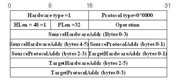 Address Resolution Protocol (ARP) Computer Science Engineering (CSE) Notes   EduRev
