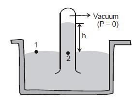 Fluids and Related Terms Class 11 Notes | EduRev