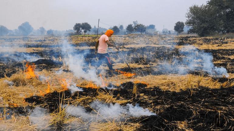 October 2020: Current Affairs Environment & Ecology- 1 UPSC Notes   EduRev