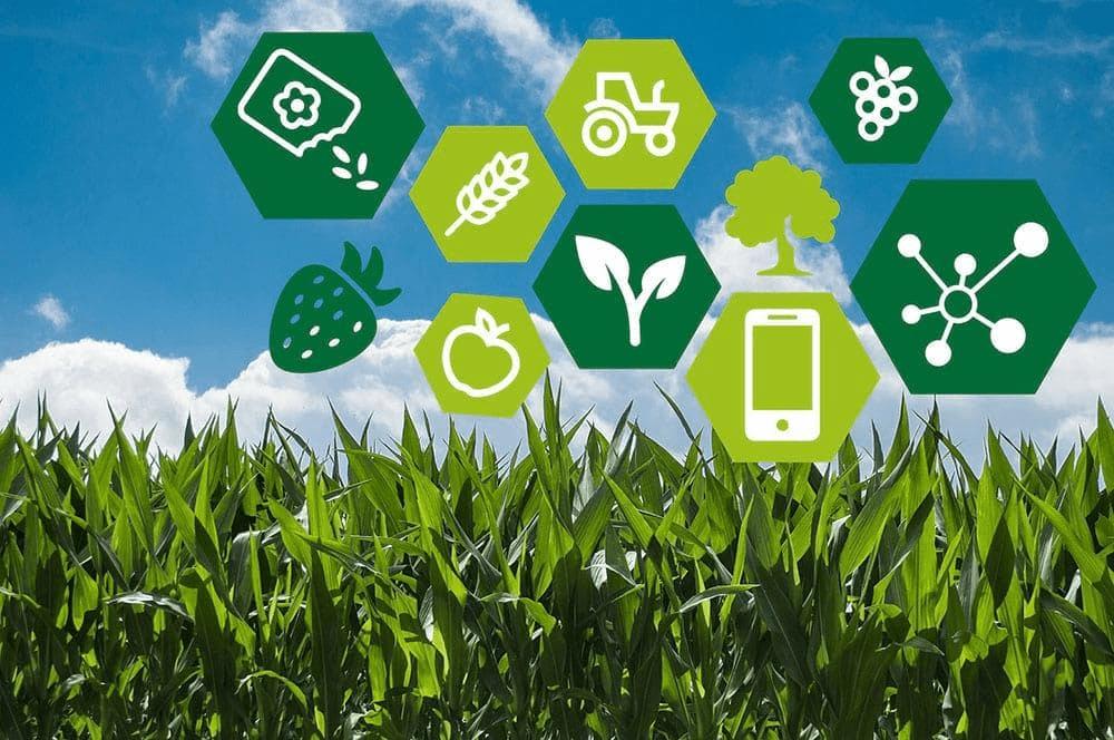 October 2020: Current Affairs Environment & Ecology- 2 UPSC Notes | EduRev