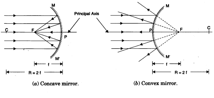 Overview of Light: Reflection and Refraction (Part - 1) (Test) Class 12 Notes   EduRev
