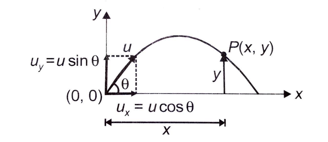 Projectile Motion Class 11 Notes   EduRev