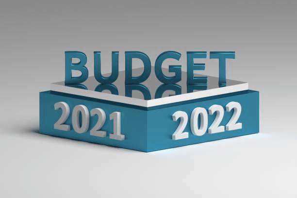 Summary of the Budget 2021-22 Notes | EduRev