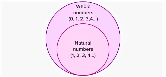 Properties of Whole Numbers Class 6 Notes | EduRev