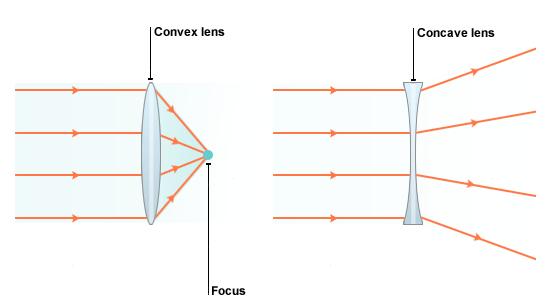 NCERT Solution - Light Class 7 Notes   EduRev