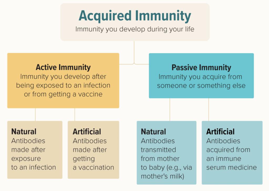 Human Health, Diseases & Immunity NEET Notes | EduRev