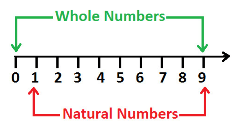 Chapter Notes - Playing with Numbers Class 6 Notes   EduRev
