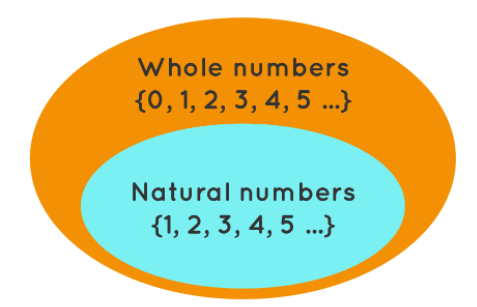 NCERT Solutions - Whole Numbers Class 6 Notes | EduRev