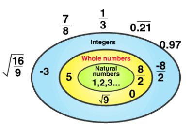 NCERT Solutions(Part- 2)- Rational Numbers Class 8 Notes | EduRev