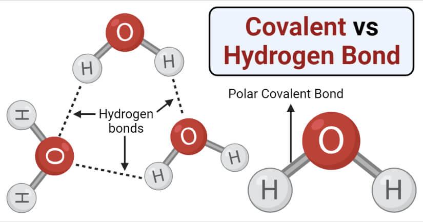 Chemical Bonding - Chemical Bonding Chemistry Notes | EduRev