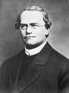 Gregor Mendel - Wikipedia