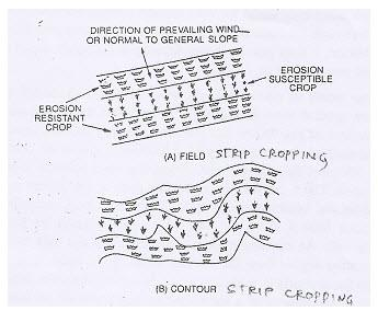 Problem/Types of Wind Induced Soil Erosion & Measures for Control, Watershed Planning,and Management Agricultural Engineering Notes | EduRev