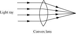 NCERT Solution - Light Class 7 Notes | EduRev