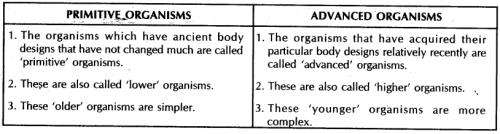Diversity in living organisms Class 9 Notes   EduRev