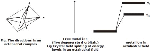 Coordination Compounds - Class 12, Chemistry Notes Class 12