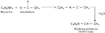 Physical and Chemical Properties of Amines - Amines, Class 12, Chemistry
